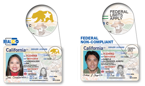 REAL ID examples